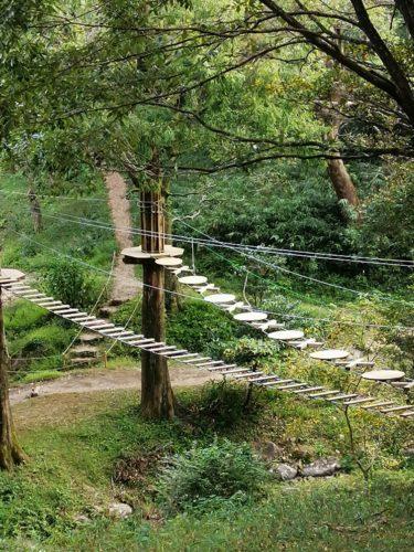 日常を忘れて楽しむ、フォレストアドベンチャー吉野ヶ里に行ってきました